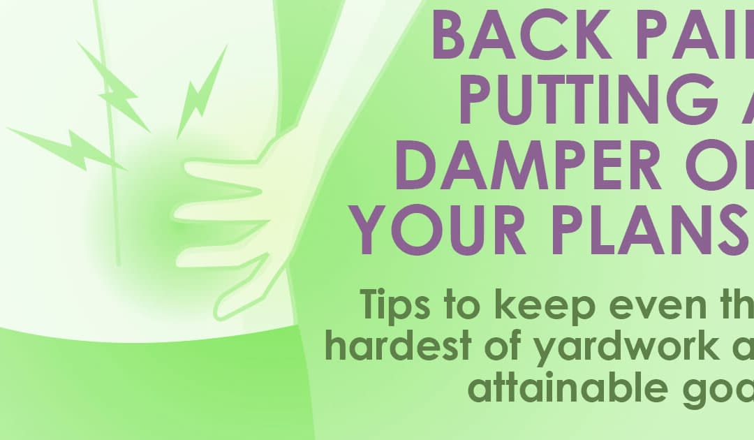 Back pain putting a damper on your weekends? On-Point Can Help.